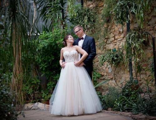 Plener ślubny w Palmiarni – Ola i Erwin
