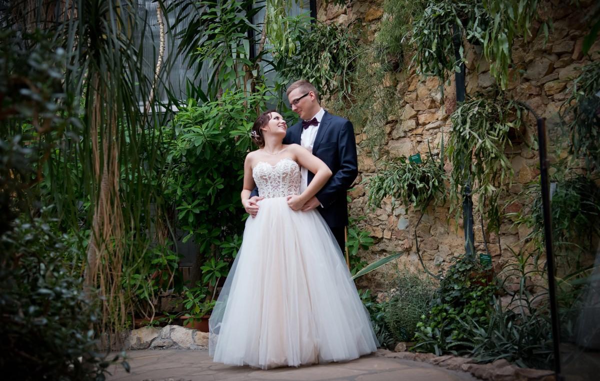 Plener ślubny w Palmiarni - Ola i Erwin 4